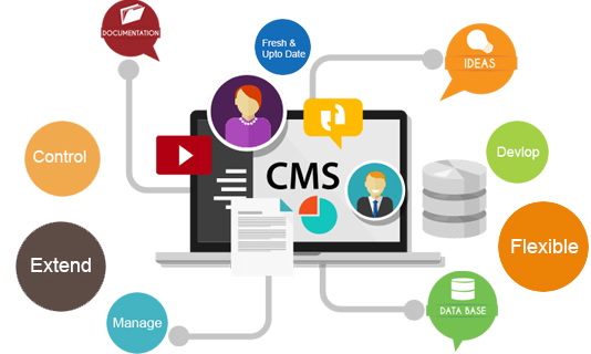 CMS Web Design & Development In Calgary